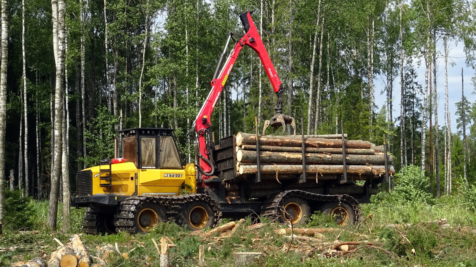 Metsis 608F